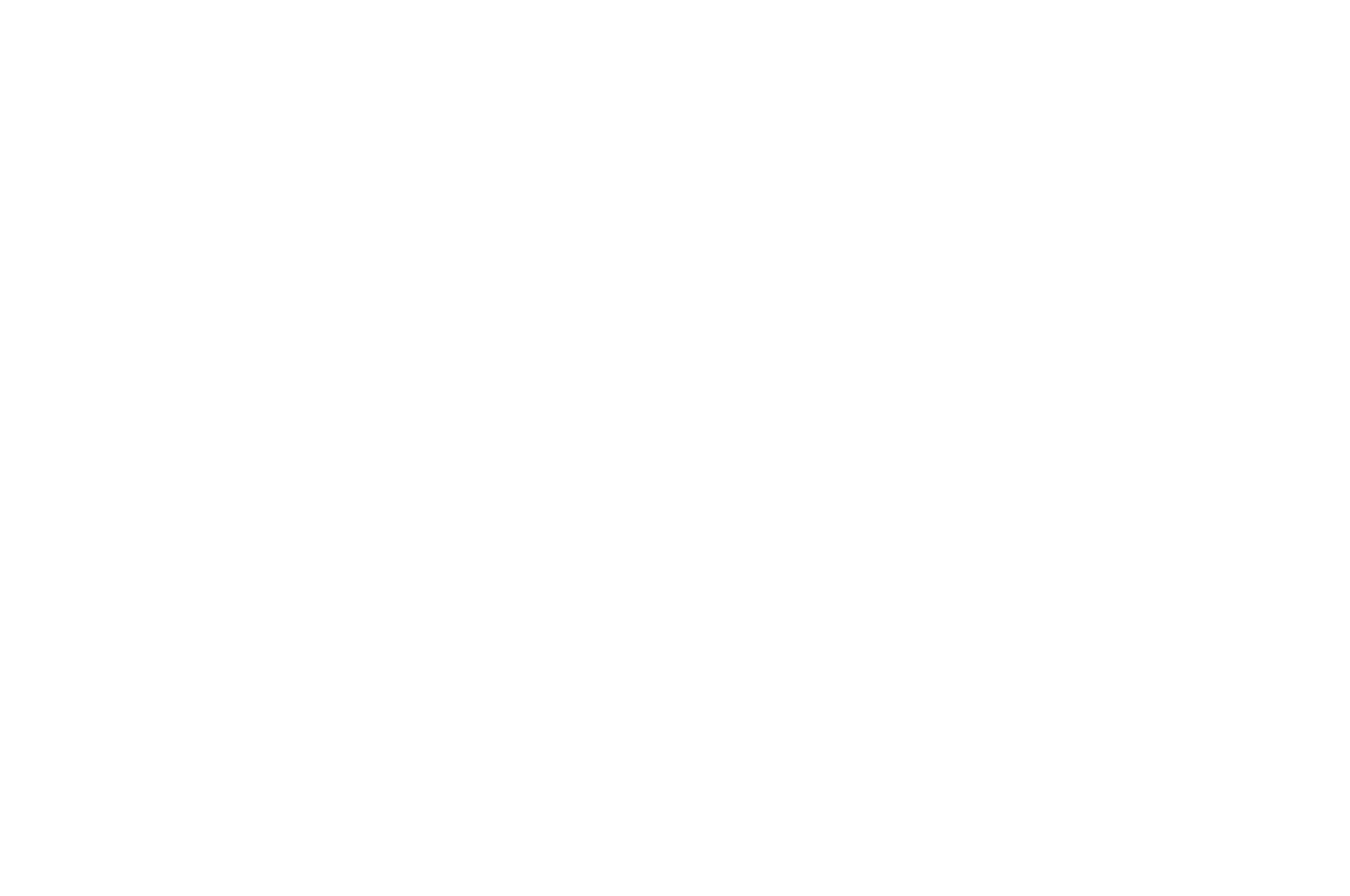 Mosaic Film Festival of Arts and Culture