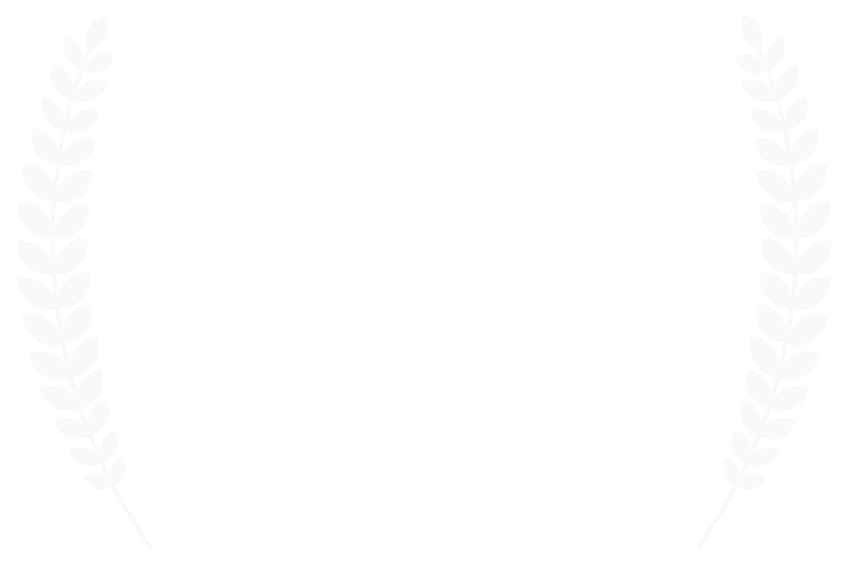 Mosaic Film Festival Halifax, Nova Scotia