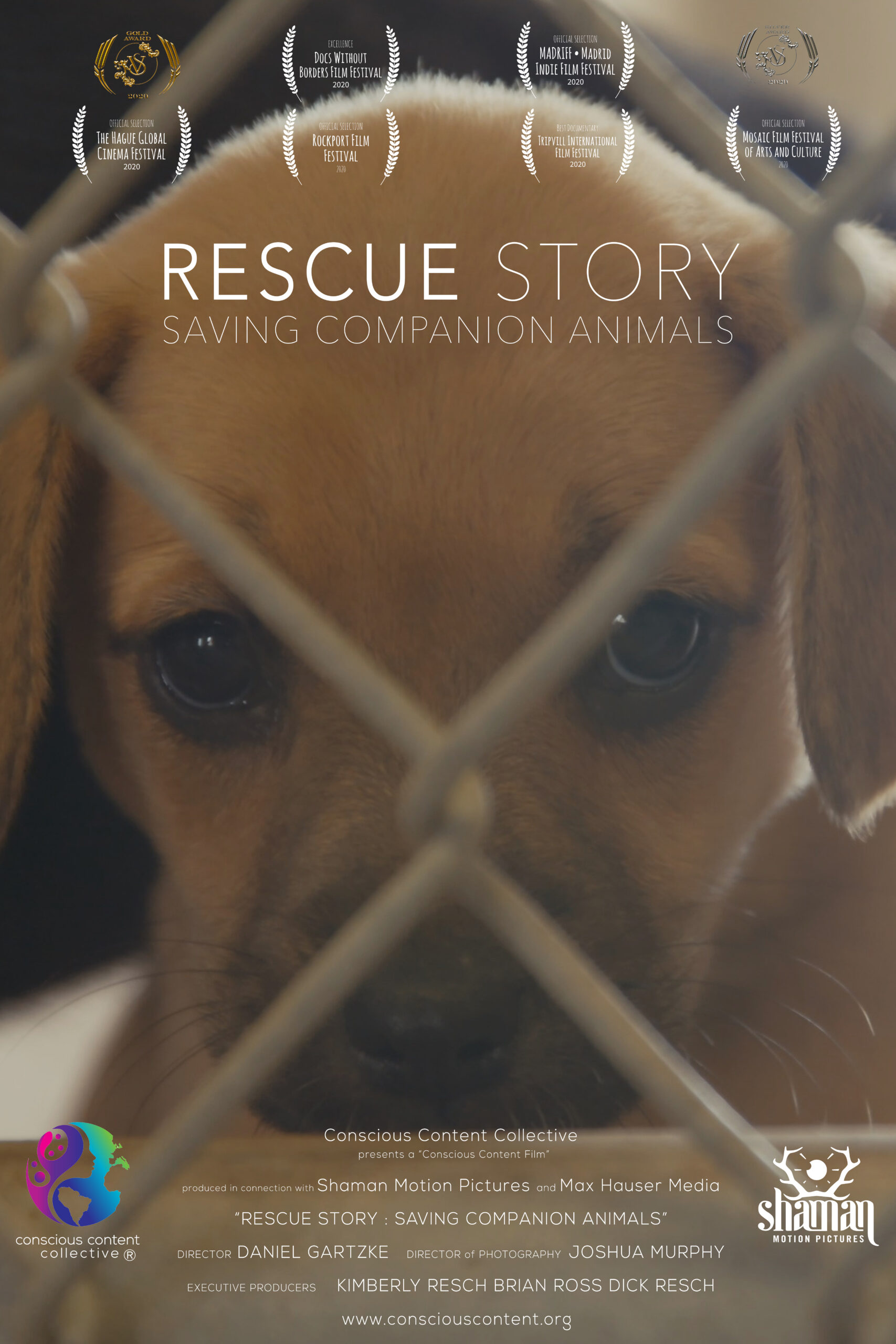 Rescue Story Poster