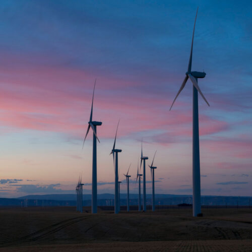 CO2 Emissions Actually Flatlined in 2019 Says IEA, Thanks to Growth in Renewables, Shunning of Coal