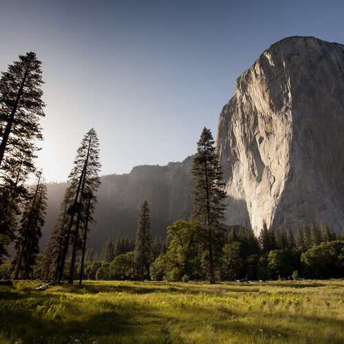 National parks a boost to mental health worth trillions: Study